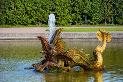 St. Petersburg, in the form of a fountain statue of a dolphin Royalty Free Stock Images