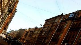 St Petersburg gator arkivfoton