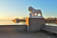 St Petersburg. Lion gardant la ville Photos libres de droits