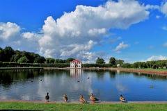 St Petersburg på Nevaen Fotografering för Bildbyråer