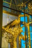 ST PETERSBURG, RÚSSIA - 25 DE DEZEMBRO DE 2016: O pulso de disparo do pavão, Fotografia de Stock Royalty Free