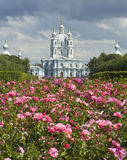 St. Petersburg, Reurrection cathedral of Smolniy monastery Stock Image