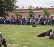 St Petersburg, Rusia - 28 pueden 2016: batalla de los Vikingos La reconstrucción y el festival históricos pueden 28, 2016, en el  Foto de archivo
