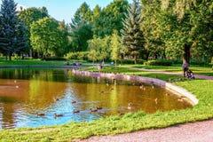 St. Petersburg, Rusland - Augustus 25, 2013: een ontspannende vakantie in aard in het park Kolpino Stock Fotografie