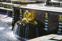 ST. PETERSBURG, RUSLAND - AUGUSTUS 2, 2015: Grote cascade in Perterg Stock Afbeelding
