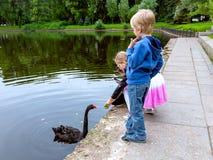 St. Petersburg, Rusland - Juli 10, 2018: De kinderen in een stad parkeren het nemen van beelden van een zwarte zwaan smarfon royalty-vrije stock afbeelding