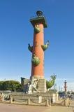 St. Petersburg, Rostral kolom royalty-vrije stock afbeelding