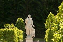 St. Petersburg, Rusland - 28 Juni 2017: witte standbeelden in het park van Peterhof in Petersburg Royalty-vrije Stock Fotografie
