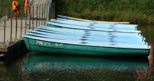 Row of rowing boats moored. St. Petersburg, Russia, August 27, 2019 Boat marina, row of rowing boats moored stock video footage
