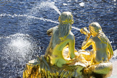 St. Petersburg, RUSSIA-28 of August, 2016. Fountains of the Big cascade in Peterhof. Royalty Free Stock Photos