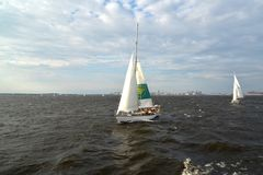 ST petersburg Russia Chodzący jachty iść przez zatokę Finlandia w letnim dniu fotografia royalty free