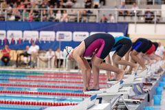 Start of women freestyle swimming competitions. St. Petersburg, Russia - December 22, 2017: Start of women 800m freestyle swimming competitions during Salnikov Royalty Free Stock Image