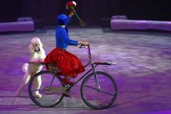 Circus show Snow Queen. St. Petersburg, Russia - December 28, 2017: Victoria Akimova as Gerda with trained dogs in the circus show Snow Queen by Great Moscow Stock Image