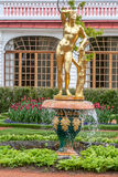 St Petersburg, RUSSIA-JUNE 03, 2017 Fontanna w parku Petrodvorets Obrazy Stock