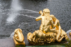 St. Petersburg, RUSSIA-JUNE 03, 2017. Fountains of the Big cascade in Peterhof. Royalty Free Stock Photo