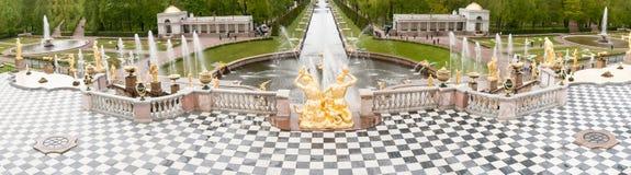St Petersburg RUSSIA-JUNE 03, 2017 Springbrunnar av den stora kaskaden i Peterhof Royaltyfri Bild