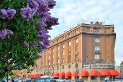 Astoria hotel and a Bush of blooming lilacs in Saint-Petersburg Royalty Free Stock Photo