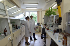 Staff in laboratory Royalty Free Stock Photo