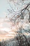 ST PETERSBURG, RUSSLAND - Dezember 2015: Wintersonnenuntergang, berühmte historische Mittelstadt mit schönem Goldhimmel Lizenzfreie Stockfotografie