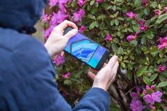 St Petersburg, RUSSLAND -02 im Mai 2019: Neue k?hle Konzepttelefon Samsungs-Falte auf dem Schirm eines Handys stockbilder