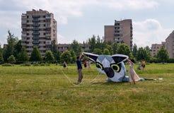 St Petersburg, Russland - 26. Juni 2016: Drachen-Festival in der Stadt von Pushkin Lizenzfreie Stockbilder