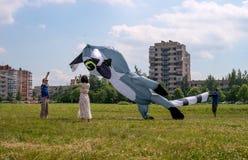 St Petersburg, Russland - 26. Juni 2016: Drachen-Festival in der Stadt von Pushkin Stockfoto