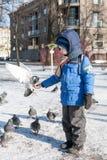 St. PETERSBURG, RUSSLAND - 5. MÄRZ: Das Kind zieht eine Taube von den Händen, RUSSLAND - 5. März 2017 ein Stockfotos