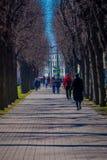 St. PETERSBURG, RUSSLAND, AM 2. MAI 2018: Ansicht im Freien von den nicht identifizierten Leuten, die im Parkumgeben von trockene Lizenzfreie Stockfotografie