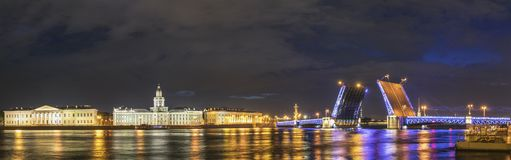 St Petersburg Ryssland royaltyfri foto