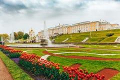 St Petersburg Ryssland - Circa Juni 2017: Storslagen kaskad i Pertergof eller Peterhof i St Petersburg Royaltyfri Foto