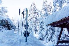St Petersburg Ryssland-Januari 27, 2019: Att skida med pinnar som klibbas i en snödriva nära stugan i, skidar semesterorten arkivfoton