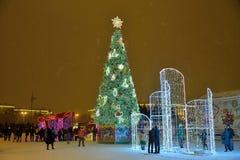 St Petersburg Ryssland - Januari 02, 2017: Folket tar bilden Arkivbilder