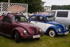 St Petersburg Ryssland - Juli 08, 2017: Festival av den gamla Volkswagen bilBughouse festen 2017 Flera Volskwagen skalbagge i exh arkivfoton