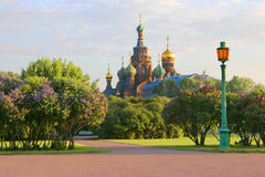 St Petersburg Ryssland Sikt av den ortodoxa kyrkan av frälsaren på blod Royaltyfria Bilder