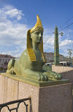 St. Petersburg, sculpture of sphinx Royalty Free Stock Images