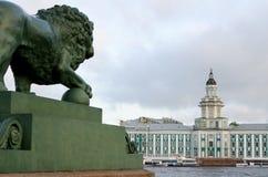 St Petersburg, sculture dei leoni Immagine Stock