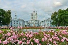 St Petersburg Smolny Cathedralel   Arkivfoto
