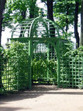 St. Petersburg, Summer garden. Shady arbor of green color Stock Images