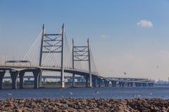 St Petersburg västra snabb diameterbro över Gulen arkivfoto