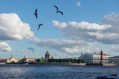 St. Petersburg. View on Vasilevsky Island Stock Image