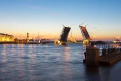 St- Petersburgskyline nachts weiße mit gezogener Palastbrücke, Peter- und Paul-Festung, Rostral Spalten und Kunstkamera, Russi Stockfotos