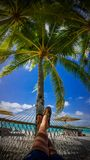 St regis bora bora over water overwater bungalows. Bungalow hammock rainbows feet palm tree royalty free stock photo