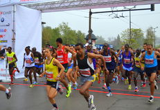 31st Sofia International maratonstart Arkivfoton