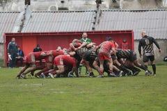 2009 21st som februari för bolldorset motsättande packe för den östliga eastleigh matchen satte ner rugbyscrumlag två uk vs Royaltyfri Bild