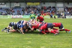 2009 21st som februari för bolldorset motsättande packe för den östliga eastleigh matchen satte ner rugbyscrumlag två uk vs Royaltyfria Foton