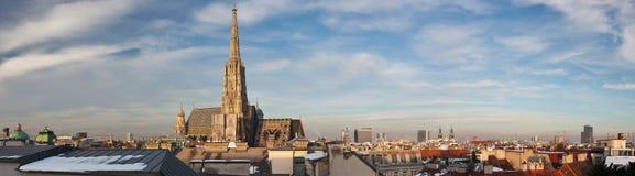 大教堂st stephan ・维也纳 免版税库存照片