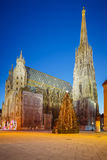 St. Stephan cathedral and christmas tree Royalty Free Stock Images