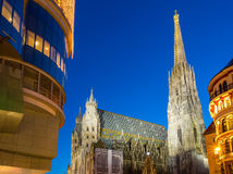 St. Stephan cathedral and christmas tree. Vienna Royalty Free Stock Photography