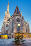 St Stephan kathedraal en Kerstmisboom Stock Fotografie