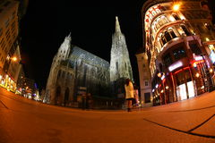 St Stephan kathedraal in Wenen bij nacht, Oostenrijk Royalty-vrije Stock Foto's